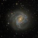 M83 - Southern Pinwheel,                                jlangston_astro