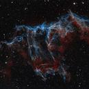 Big Bat in the universe ngc6992,                                Tian Li 李天
