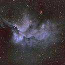 Wizard Nebula,                                Rainer Paso