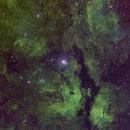 Gamma Cyg Nebula SHO Version,                                J. Norris