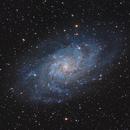 M33 - THE Spiral Galaxy in Triangulum,                                Sektor