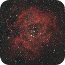 NGC2244/Rosette Nebula,                                JR1987