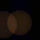 Partial Solar Eclipse - 2006-03-29 and seagull (animated GIF),                                gigiastro