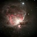 Orion Nebula,                                Francesco