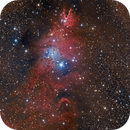 NGC 2264 - Cone Area  ITU RH 200 First Light,                                Paddy Gilliland