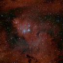 Christmas tree nebula,                                -..--