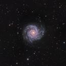 M74 Redux,                                John Hayes