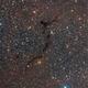 Seahorse Nebula - Barnard 150,                                vi100