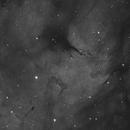 IC1318 Ha,                                Roel Noort