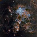 NGC 2070,                                Michel Lakos M.