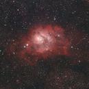 M8 Cropped,                                iuseglasses