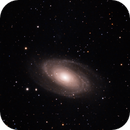 M81 - LRGB - somewhat rushed,                                bobzeq25