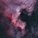 North America Nebula Bicolor - Deep Sky West Remote Observatory,                                Deep Sky West (Lloyd)
