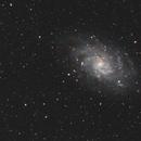 M33,                                Michael Völker