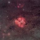 IC 1396 wide-field,                                Robin Onderka