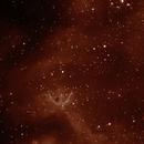 IC 1848,                                Markuzio