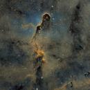 IC1396 Elephants Trunk SHO,                                Mark Carter