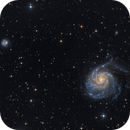M101 and NGC5474,                                Schicko