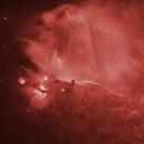 IC 434 Horsehead Nebula in ha,                                Toto