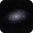 Triangulum Pinwheel Galaxy (M33),                                Scott Denning