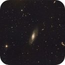 M106 and Friends,                                Ray Heinle