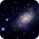 NGC2403,                                Tim Hutchison