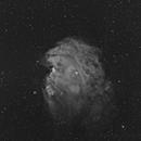 Monkey Head in H-alpha,                                rflinn68