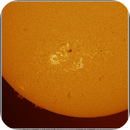 The Sun in H-Alpha - active areas 12785 & 12786 - prominences, ZWO AS290MM, 2021128.,                                Geert Vandenbulcke