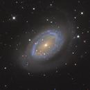 NGC 4725 & NGC 4712,                                Albert van Duin