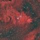 NGC 2264 Cone Nebula and Christmas Tree Cluster,                                Dave Watkins