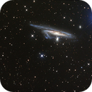 NGC 1532 from NSW, Australia,                                Jeff A Brown (pullaqua)