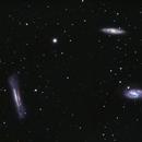 Leo Triplet ( M65, M66 and NGC 3628),                                Sasho Panov