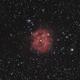 IC 5146 Cocoon Nebula,                                helios