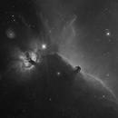 Horsehead Nebula and Flame Nebula - Nébuleuse de la Tête de Cheval et nébuleuse de la Flamme,                                Didier Walliang