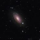 M63 The Sunflower galaxy,                                John