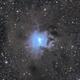 NGC 7023 - Iris Nebula,                                Yizhou Zhang
