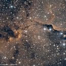 IC1396A Elefantenrüsselnebel,                                Kai Albrecht