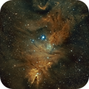 Christmas Tree Cluster / Cone Nebula (SHO),                                Jim McKee