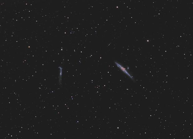 The whale galaxy,                                OrionRider