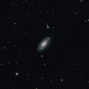 M88 #1,                                Molly Wakeling