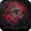 Rosette Nebula,                                Paul Brand