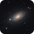 M 63,                                Fronk