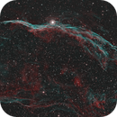 NGC 6960 - The Witch's Broom,                                Ron