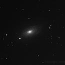 M 63  Sunflower Galaxy,                                Tullio Di Primio