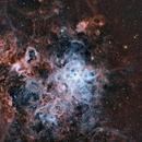 TARANTULA NEBULA NGC  2070,                                JAIME FELIPE RAMIREZ NARVAEZ