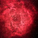 NGC 2237 - Rosette Nebula,                                Stefano Ricci