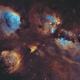 NGC6334 SHO,                                Christopher Gomez