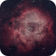 Rosette Nebula,                                apaps