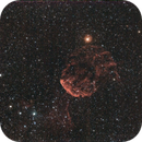 IC 443  - Jellyfish Nebula,                                Wolfgang Zimmermann