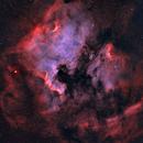 The North America & Pelican Nebulae wide field,                                Davide Coverta